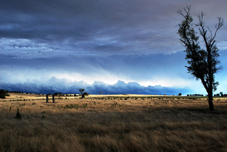 Australia New South Wales  Cloud - Sky Field Grass Landscape Nature No People Outdoors Rural Scene Sky Storm Cloud Tree