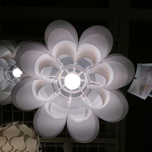 A lamp!