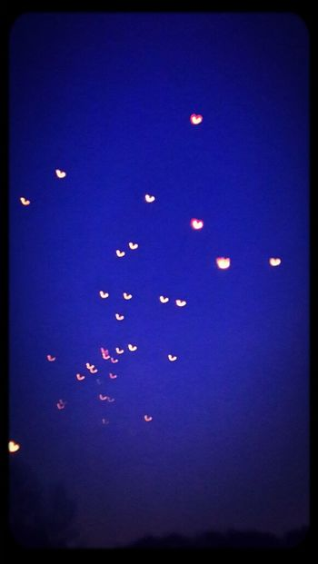 Lights Sky Wonder Of Life Spring!