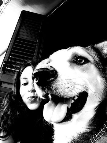 One Animal Dog Pets Domestic Animals Looking At Camera Selfportrait Selfie ♥ Selfiedog Selfiedoglove