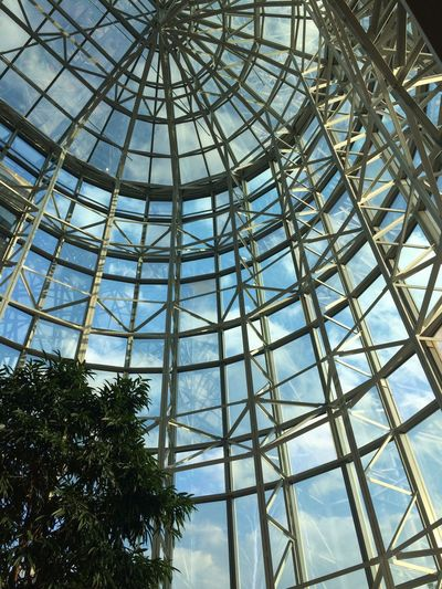The Architect - 2015 EyeEm Awards