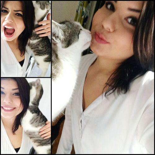 Cat♡ Catoftheday Catlovers Lovemycat Sohappy Happy :) Cuddlebuddy Inlove ♡ Sohappyrightnow