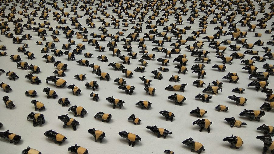 Save The Tapir Tapir Craft Hand Made Models Ceramic Art Pottery Thousands Hundreds Animal Themes Animal Malaysia thousands of hand made pottery Tapirs made by children for save the tapir charity Fine Art Photography