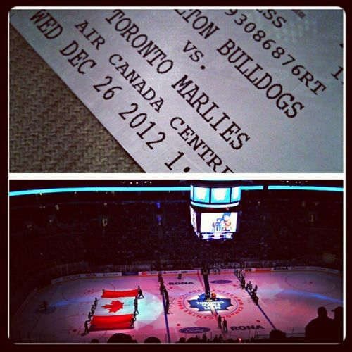 First hockey game...minor league. Torontomarlies Marlies Nolockout Toronto canadaadventures hockey cherrypoppin ACC