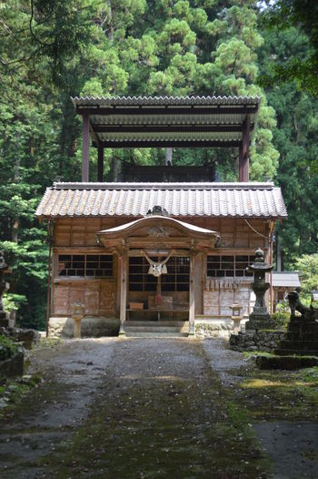 Shrine One Of My Favorite Place Green Peaceful Relaxing Tree Architecture Building Exterior Built Structure Countryside Traditional Building