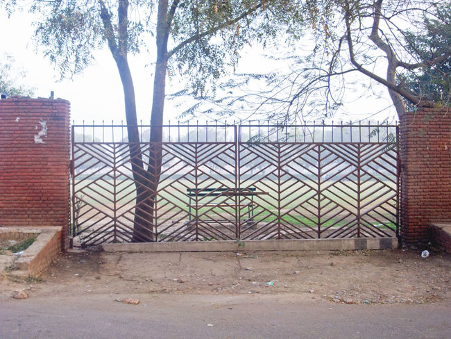 A metal gate that was not meant to remain open given that there is a tree growing in the path of the gate. It is a gate to a garden tat has 3 other gates that are open, and hence this one remains closed the whole time. Brick Wall Closed Gate Gate Gate And Tree Gate And Wall Gate Remains Closed Metal Gate Outdoors Tree Wall And Gate