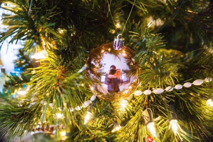 Christmas Reflection Self Portrait Holiday Celebrations Ornament Photographer Photography Camera Reflection Reflection Christmas Christmas Tree Christmas Decoration Celebration Tree Christmas Ornament Decoration Christmas Lights Tradition Indoors  Green Color