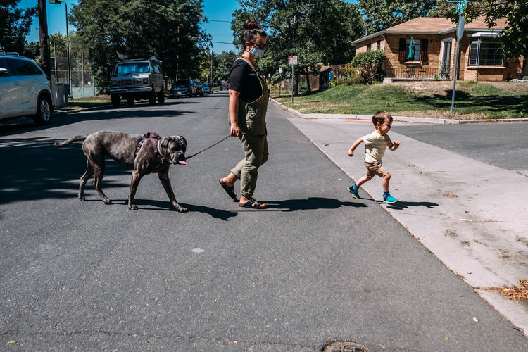 People with dog on street in city