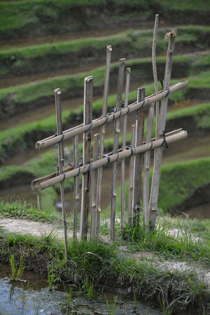No People Outdoors Grass Wooden Post Landscape Wood - Material Day Rural Scene Nature Close-up Bali Bali, Indonesia Baliphotography Ricefields Rice Terraces Rice Field Ricefield Tegalalang Tegallalang Rice Terraces Tegallalang Wood Barrier ASIA Asian Beauty
