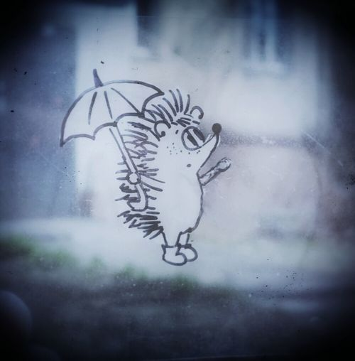 Hedgehog's Adventures Rainy Day Drawing