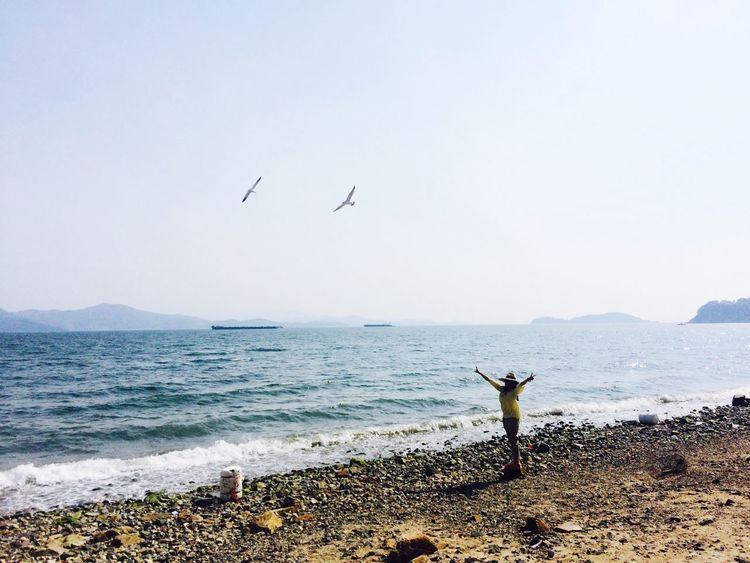 Sea Green Green Green!  South Korea Seaside Landscape Sea View Roadtrip Sky And Clouds Woman Seabirds The Great Outdoors - 2016 EyeEm Awards The Street Photographer - 2016 EyeEm Awards