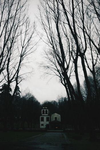 Braga Portugal Winter Park Rainy Days Rain Dark Vscocam VSCO Vscogood