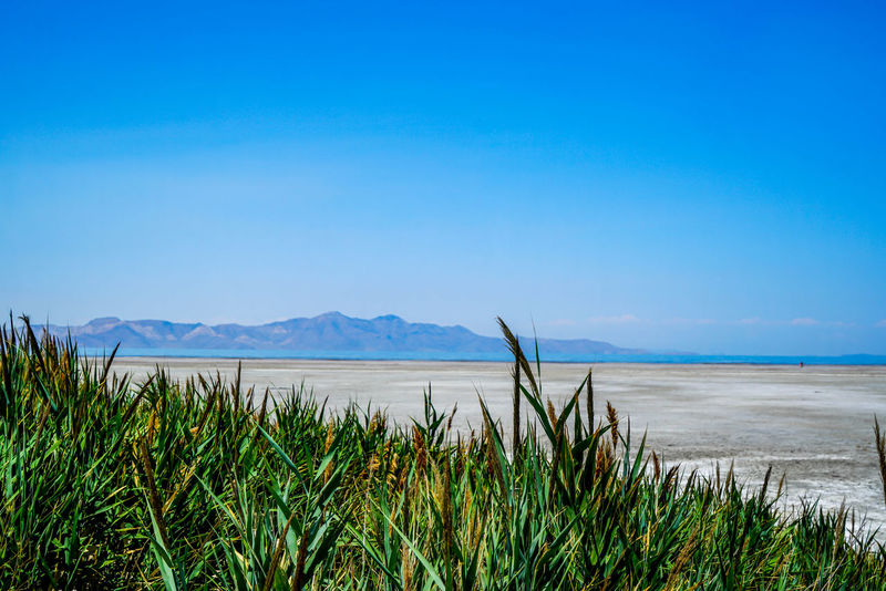 The Great Salt Lake in Utah is the largest saltwater lake in the western hemisphere and is far saltier than seawater. Boating Nature Sunny Utah View Beauty In Nature Blue Blue Sky Day Great Salt Lake Landscape Mountains Nature Outdoors Outdoors Photograpghy  Rocks Salt Flat Saltwater Sand Scenics Sky Summer Tranquil Scene Tranquility Water