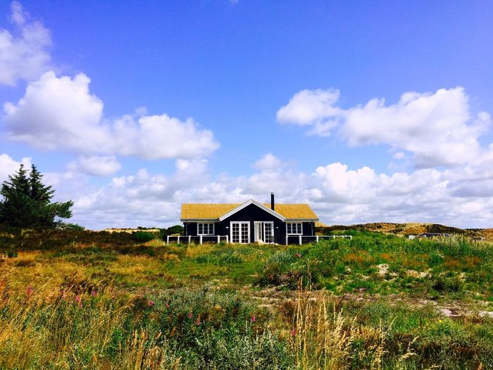 That little house along the Danish coast Wooden House Wooden Grass Grass Roof Hidden Denmark Summer In Denmark Danish House Nordic Hermit