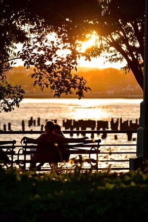 Sunset_collection Hudson River Greenway Hudson River Greenway Sunset_collection Hudson River Greenway Water Tree Plant Sitting Sky Sunset Seat Silhouette Bench Beauty In Nature Real People Leisure Activity Lifestyles Scenics - Nature Relaxation Tranquility Nature Orange Color Outdoors