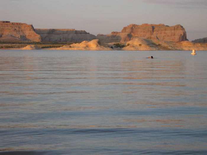 Swimming at Lone Rock Beach, Lake Powell, Utah. Lake Powell Swimming Utah Beauty In Nature Lake Nature Outdoors Sandstone Scenics Sunset Tranquility Water Be. Ready. Perspectives On Nature Perspectives On People
