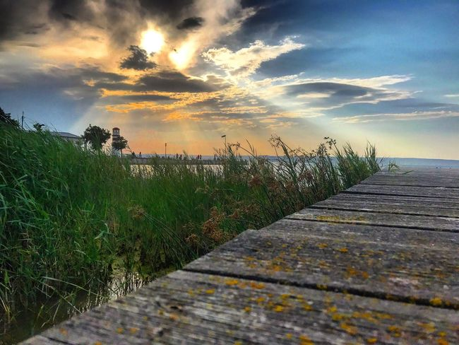 Lost In The Landscape Sky Cloud - Sky Nature Sunset Scenics Tranquil Scene Outdoors Beauty In Nature Tranquility Growth Sea No People Plant The Way Forward Water Grass Horizon Over Water Day