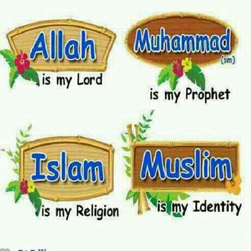 As Salaamu Alaikum Everybody