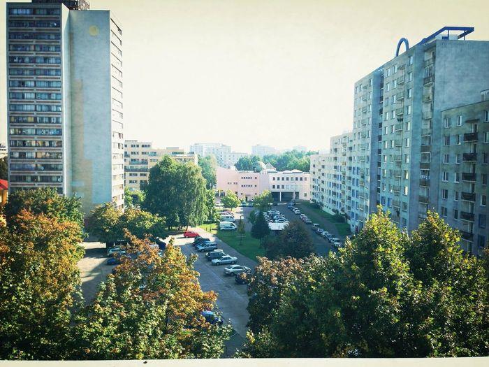 Krásné ráno všem :-)