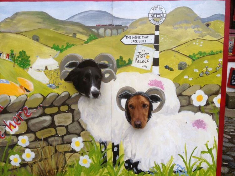 Feeling sheepish Animal Themes Domestic Animals Mammal Dog Pets No People Variation Standing Flower Togetherness Day Outdoors Sheep Funny