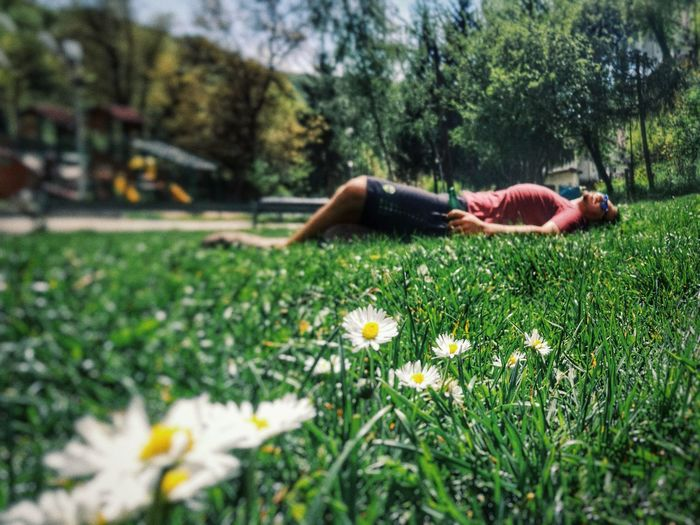 Nature Lying Down Grass Outdoors Flower People People Nature