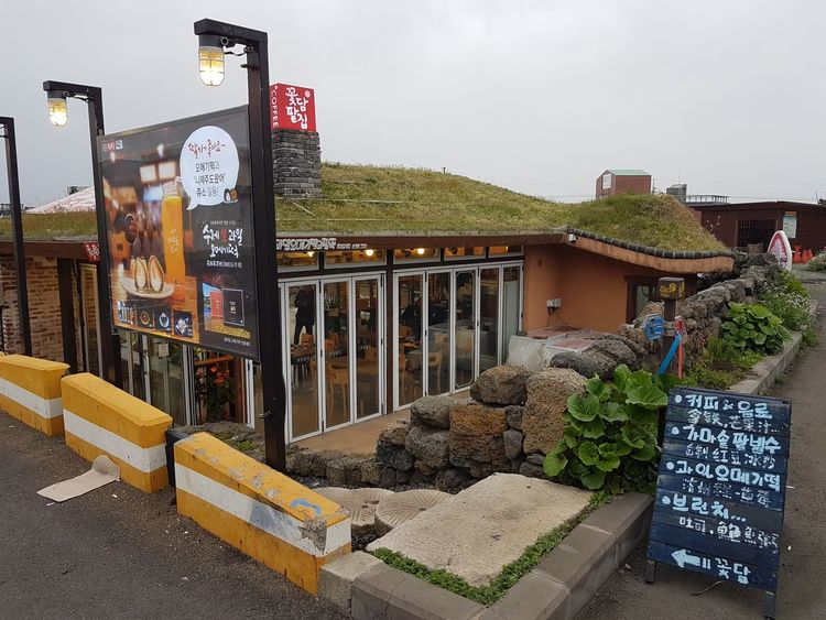 Art Is Everywhere Morning South Korea Architecture Cafe Jejuisland Local Food