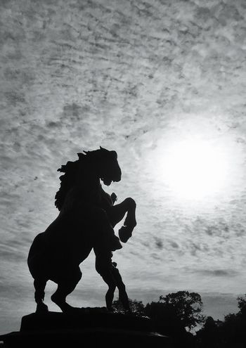 EyeEm Best Shots - Black + White Black And White Photography Heavy Contrast Statue Big Horse