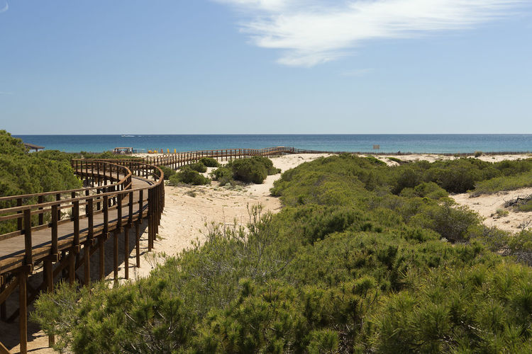 Wooden footbridge on the beaches of Arenales del Sol, Elche. Province of Alicante, Spain Alicante Dunas Dunes Elche Footbridge Beach Beauty In Nature Comunidad Valenciana Day España Horizon Over Water Nature No People Outdoors Scenics Sea Sky Tranquil Scene Tranquility Tree Water Wooden