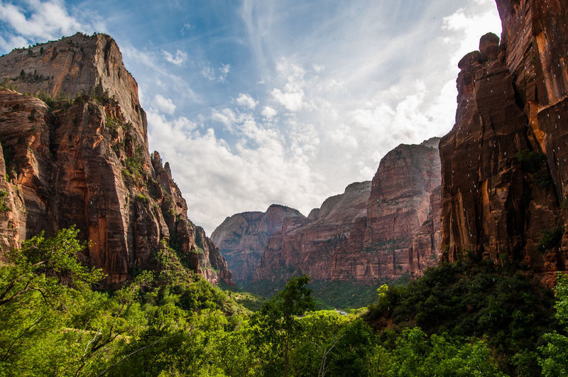 Angels Landing Zion Beauty In Nature Canyon Cloud - Sky Day Eroded Formation Geology Mountain Nature No People Outdoors Plant Rock Rock - Object Rock Formation Scenics - Nature Sky Tranquil Scene Travel Travel Destinations Valley