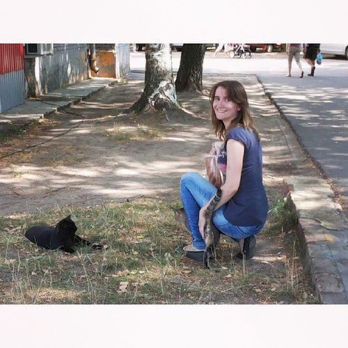 кусочкилета Catseverywhere  хозяевадубны Свинья везде котов найдёт