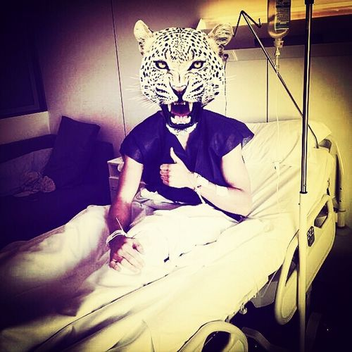 Free Tiger At Hospital That's Me Model
