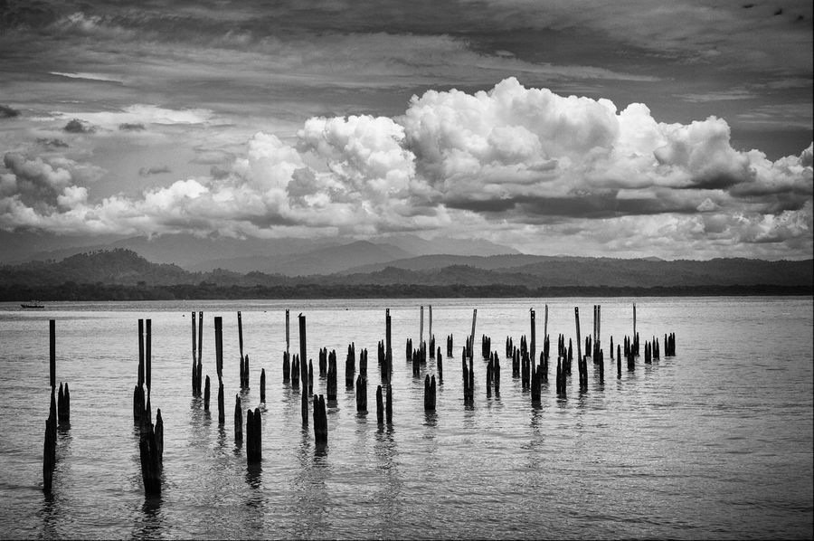 sticks in the sea Cloud_collection  Cloud Clouds & Sky Cloud - Sky Blancoynegro Beauty In Nature Bnw_life Bnw_collection Bnw_captures Bnw Black And White Photography Blackandwhite Photography Black And White Blackandwhite Picoftheday Cloud - Sky Sky Water Sea Nature Scenics - Nature Beauty In Nature Tranquility Day Beach Land Idyllic No People Post