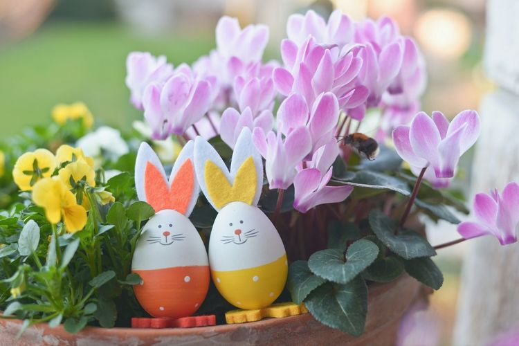 Close-Up Of Toy Rabbits On Potted Plants