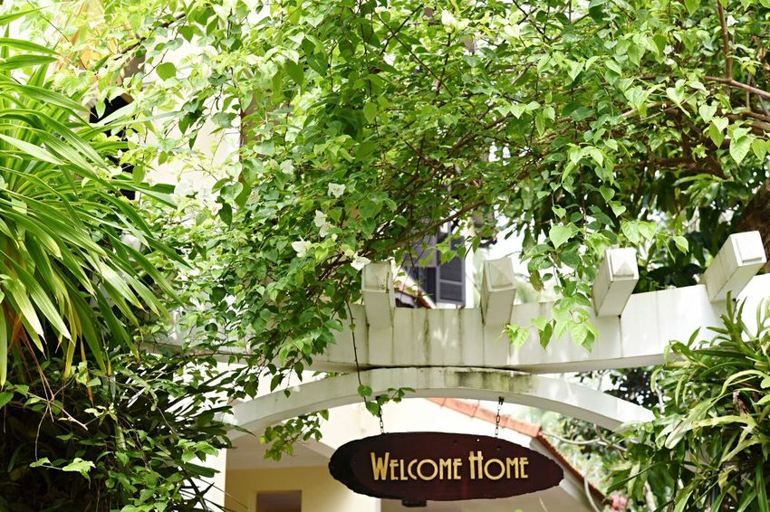 Hospitality Garden Hotel Leaf Text Growth Plant Communication Green Color Day Outdoors Tree