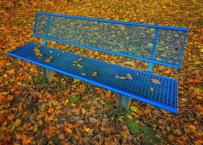 Autumn Autumn Colors Bank Blue Day High Angle View IPhoneography Leafs No People Outdoors Ruhrgebiet Sports Event  Supernormal Underground Yellow