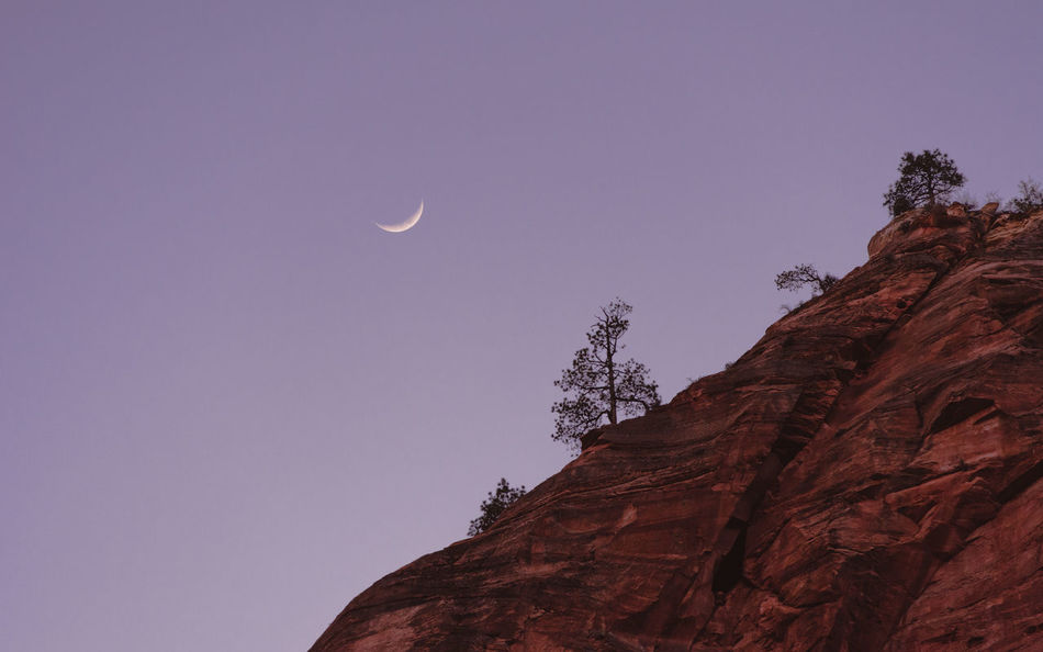 Moon and Tree Moon_collection Moon Night Nature Beauty In Nature Crescent Astronomy No People Outdoors Sky Moonphotography Nature_collection Nature On Your Doorstep Nature Photography Nature Shooters Moon Shots MoonScape Art Of Nature AOV Art Of Visuals First Eyeem Photo