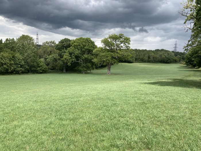 Scenic view of golf course against sky