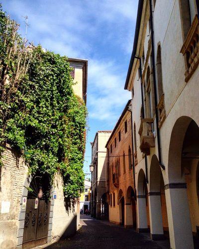 Passeggiando per il centro di Padova Padova Veneto Italia Italy Strada Street Streetphotography EyeEm Best Shots EyeEm Gallery EyeEm Best Edits EyeEmBestPics Eyeemphotography