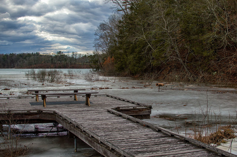 Frozen Pier Outdoor Photography Naturelovers Nature Photography Winterscapes Frozen Nature Frozen Water Water No People Tree Day Outdoors Sky Nature