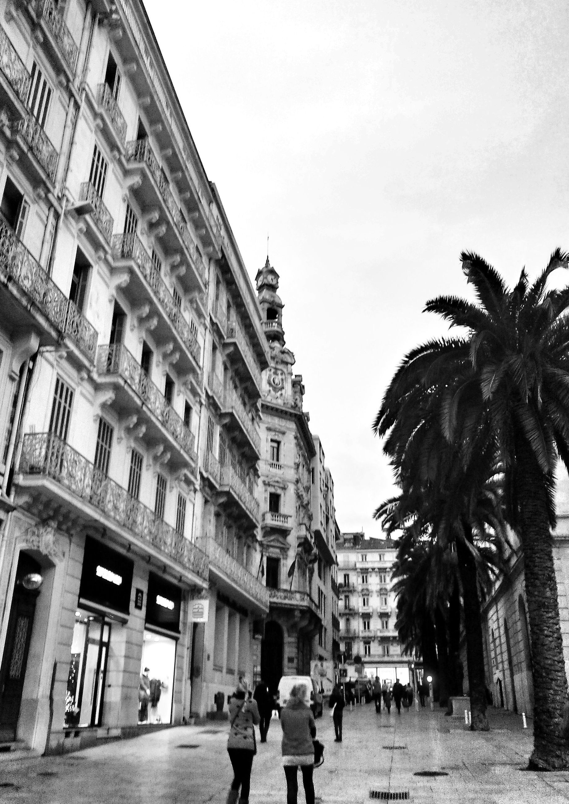architecture, building exterior, built structure, men, lifestyles, person, walking, city, leisure activity, city life, street, building, sky, low angle view, large group of people, outdoors, palm tree, tree, day