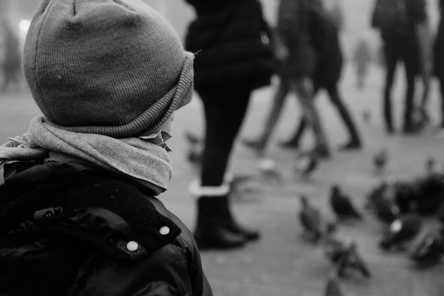 ..checking the pigeon to Venezia