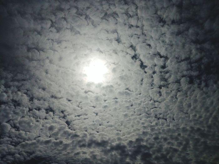 heaven door Lightring Light Ring Clouds Clouds And Sky Cloud Cloud And Sky Sky Strong Light Point Light Backgrounds Textured  Sun Sky Close-up