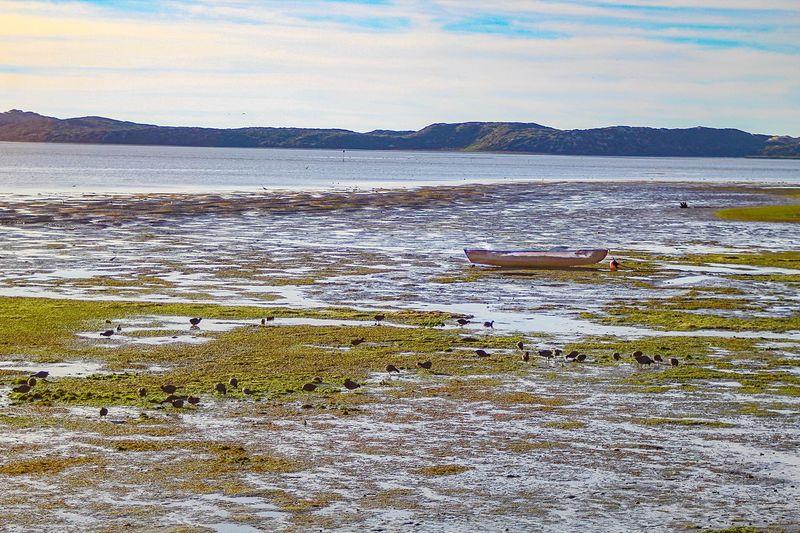 Los Osos, Ca Water Nature Scenics Outdoors No People Boat Marsh Sky California Ocean