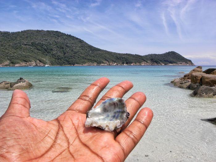 Beach Sea Human