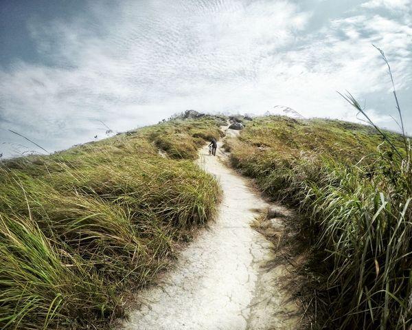 A path to success. Hiking Trail Hill Little Hiker Path Success Beginnings Nature Landscape
