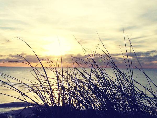 Beach, sun 👌