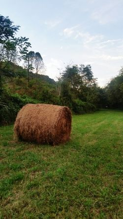 Hay Bales Round Bales Country Life