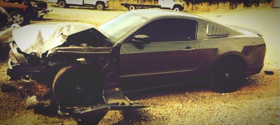 Feeling Thankful Noonewashurt Jenandbarrysadventures minus me.. Rip Mustang