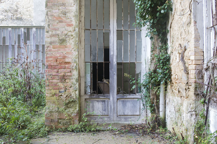 Built Structure Architecture Building Exterior Window Building Day Plant No People House Old Abandoned Outdoors Wall Entrance Wall - Building Feature Brick Wall Mental Hospital  Volterra Volterra Toskana Volterra Toscany