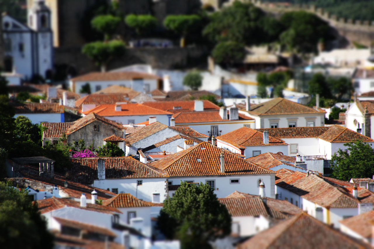 building exterior, architecture, built structure, roof, house, crowded, town, residential building, high angle view, outdoors, day, tree, city, tiled roof, tilt-shift, cityscape, residential, nature